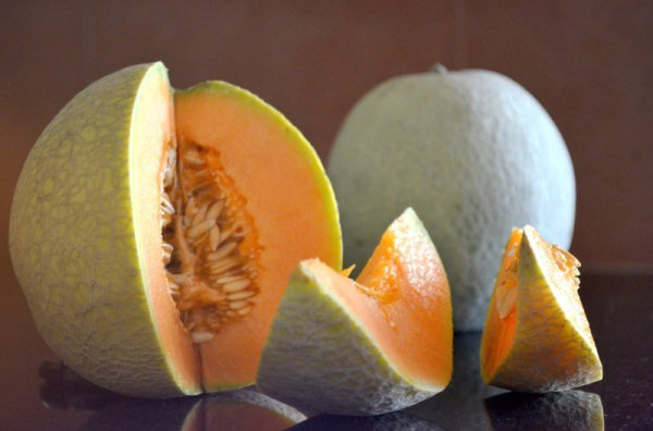 muskmelon_high_res